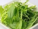 水菜2.jpg