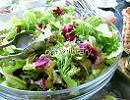 野菜サラダ2.jpg